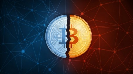 Bitcoin in Brief Monday: A Panther's Moonshot Bet