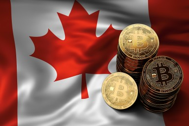 ICE Agency Charges Payza and Two Canadian Citizens With Bitcoin Money Laundering